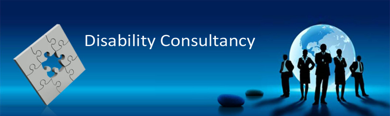 Disability Consultancy